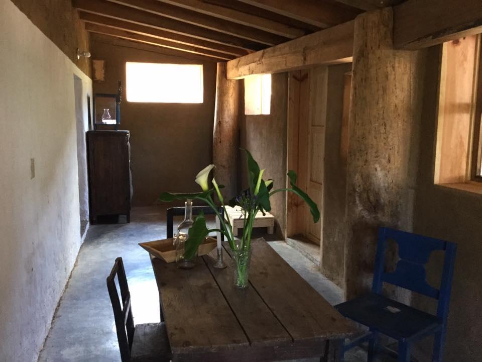casa cactus 3