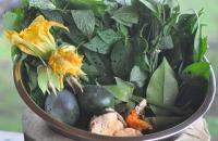 vegtables-617-x-410