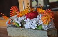 flowers-617x410